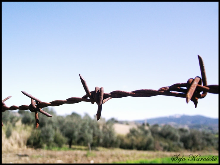 Photograph Barbed wire by Sefa Karateke on 500px