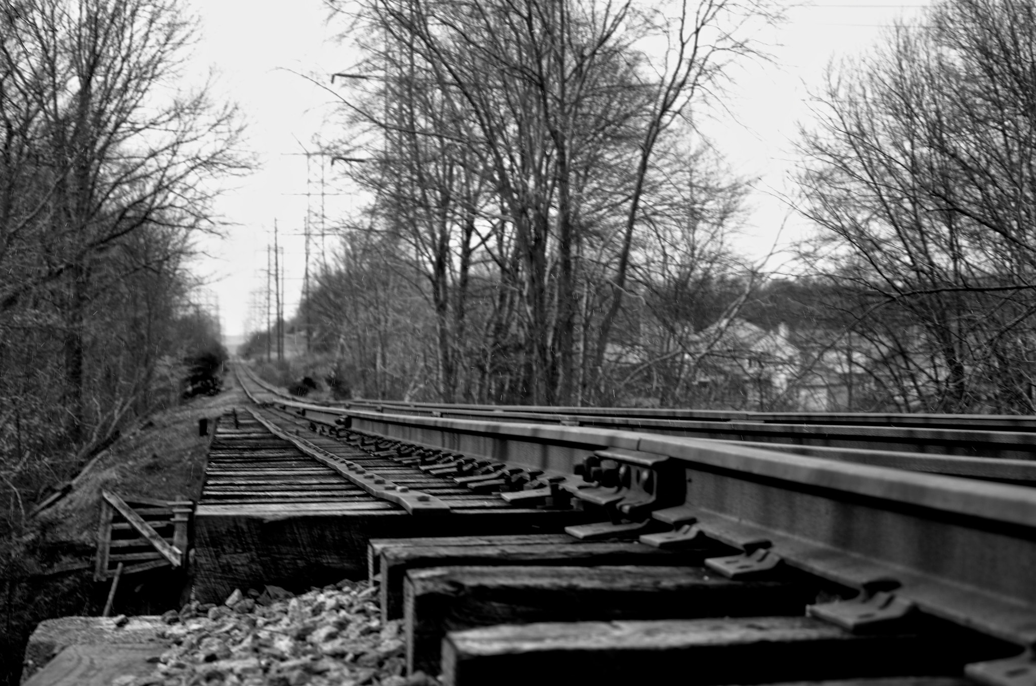 Photograph Abandoned Rails by Sam Commarato on 500px