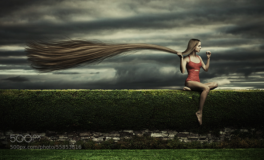 Photograph gone with the wind by Simon Siwak on 500px