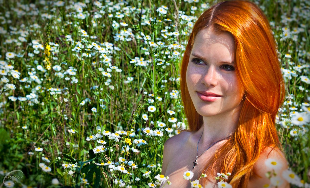 Photograph Redhead camomile by Aona Ivanova on 500px