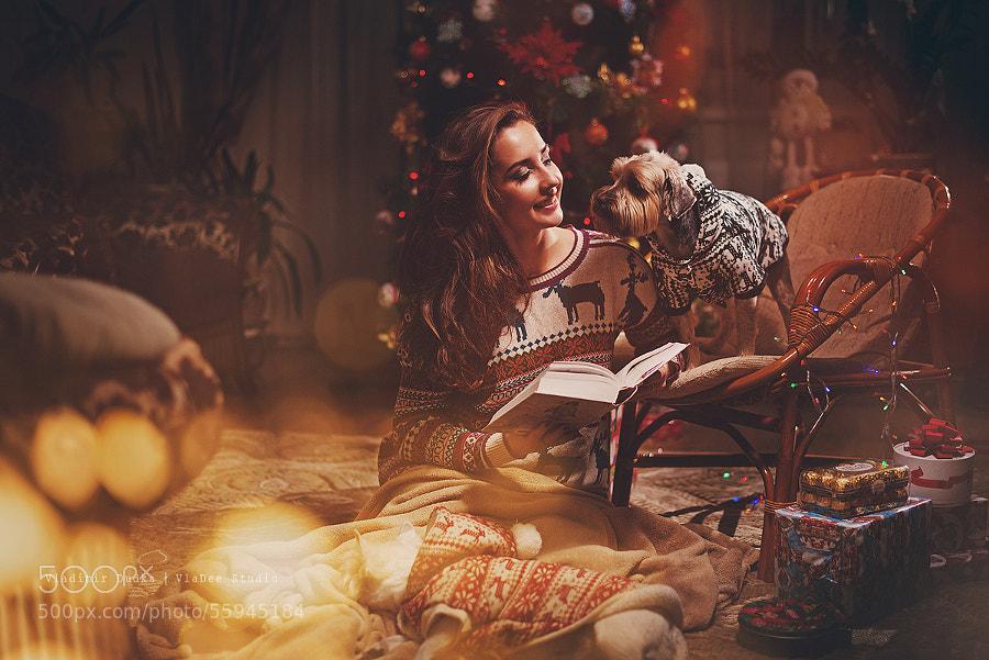 Photograph Merry Christmas by Vladimir Dudka on 500px