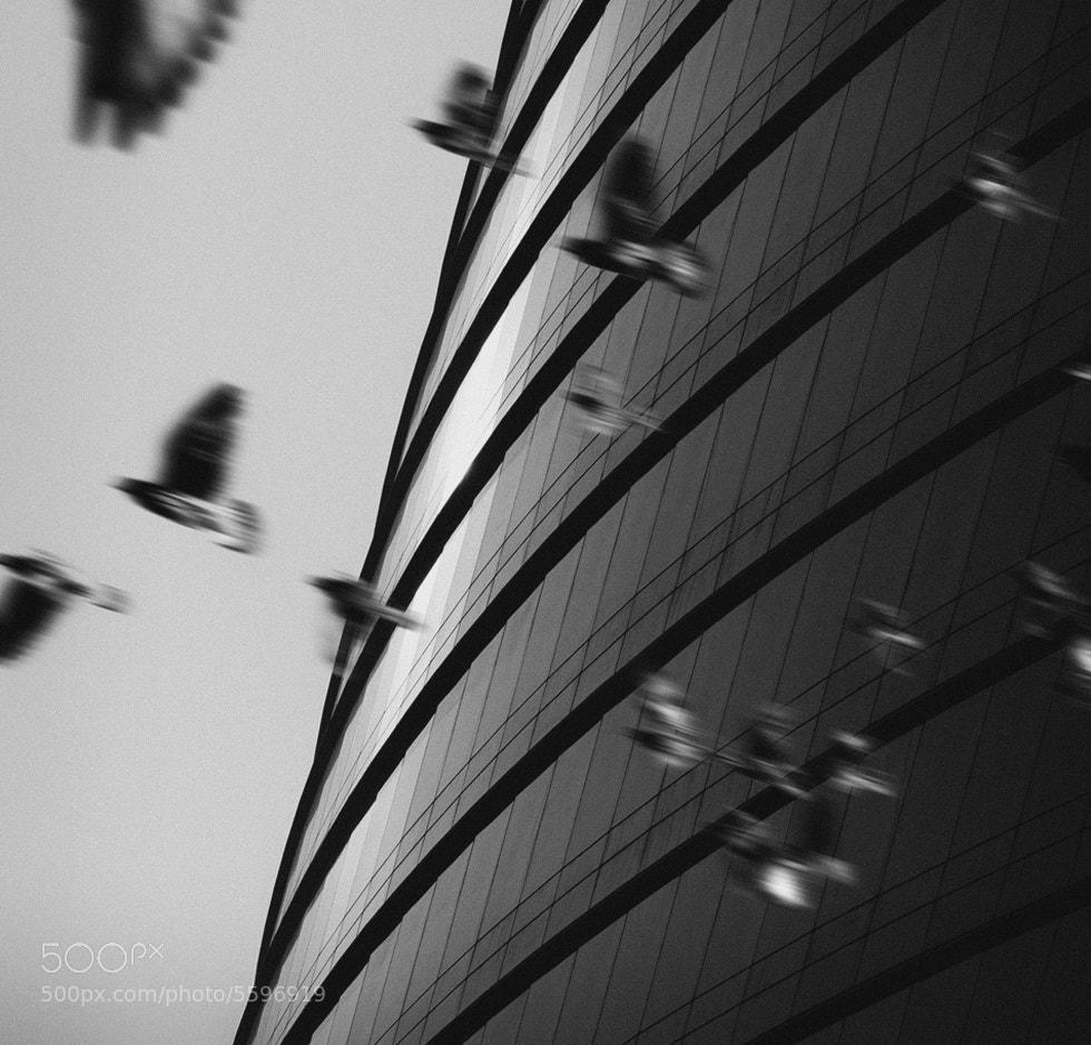 Photograph escape by Vladimir Perfanov on 500px