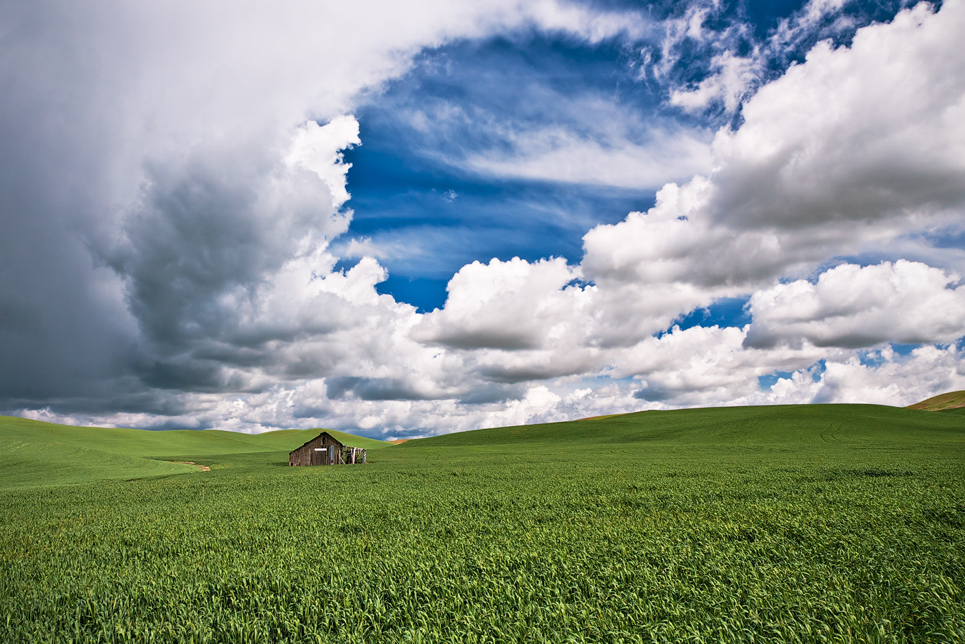 Photograph Field of Dreams by Dee Nichols on 500px