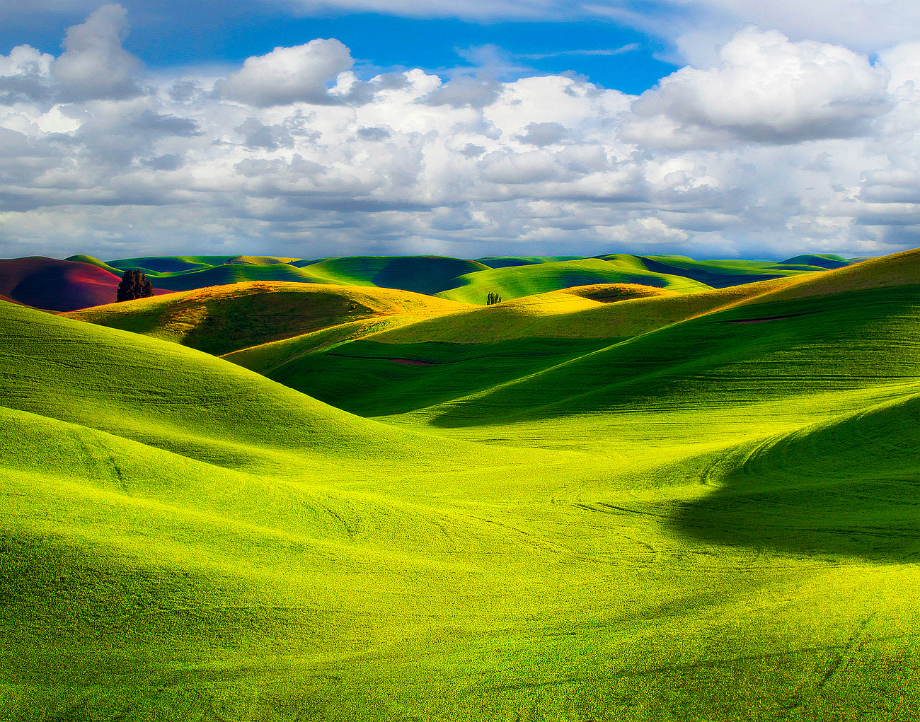 Photograph Storm Clouds In The Palouse by Kevin McNeal on 500px