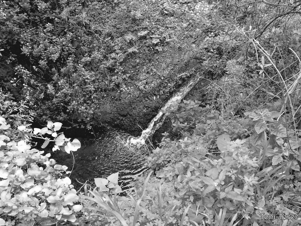 Photograph Pequeña cascada by Toni Teror on 500px