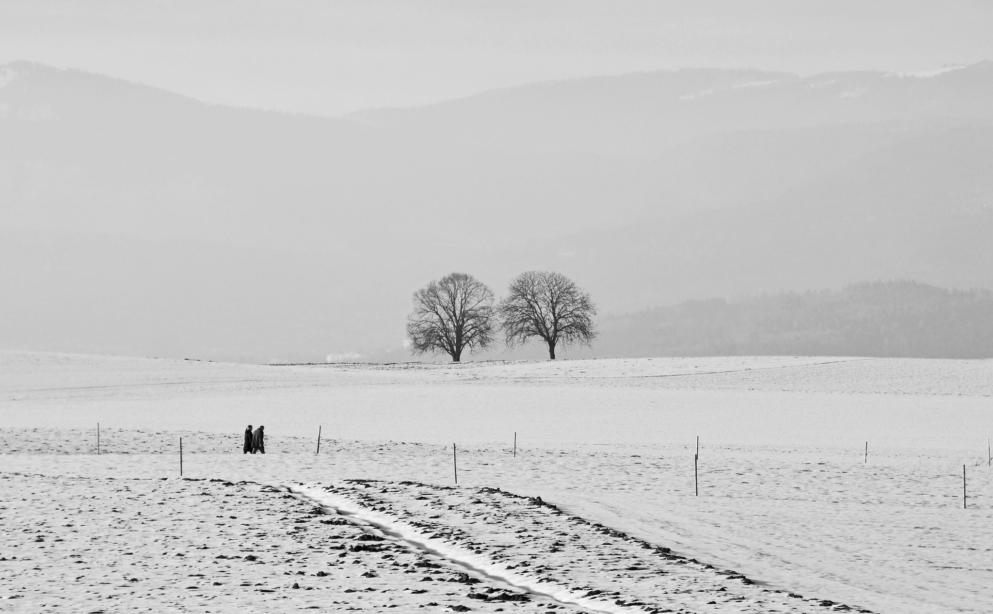 Photograph Two couples by Peter Kempf on 500px