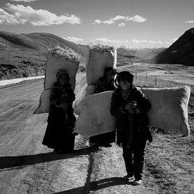 to be a woman to-day,in Tibet