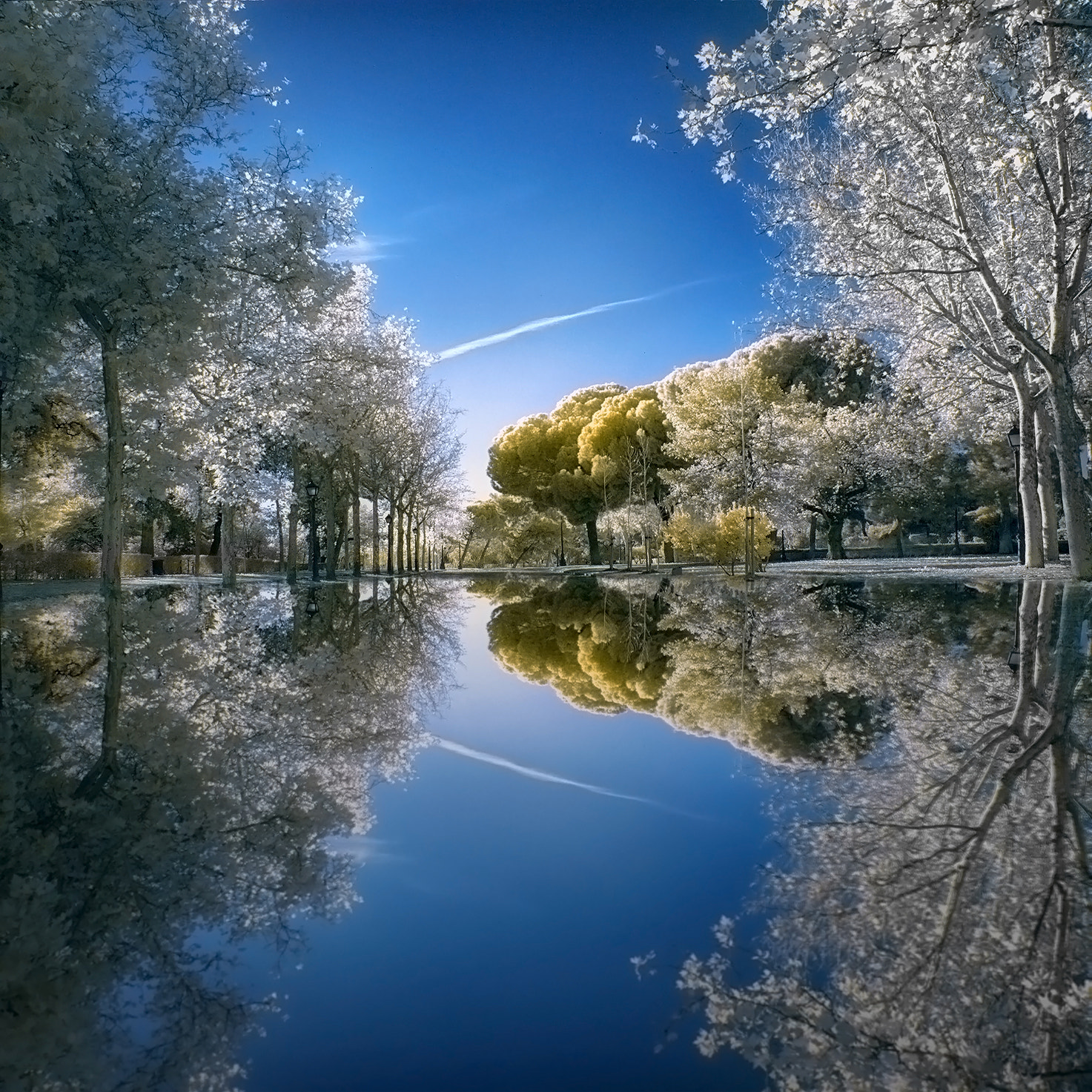 Photograph Golden Pond by Alfon No on 500px