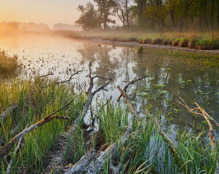 Photograph Misty Morning by Rainer Mirau on 500px