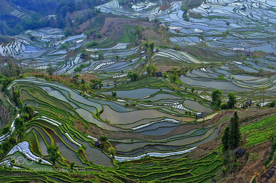 Photograph Earth melody by XiaoJia Jin on 500px