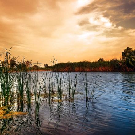 Evening Lake