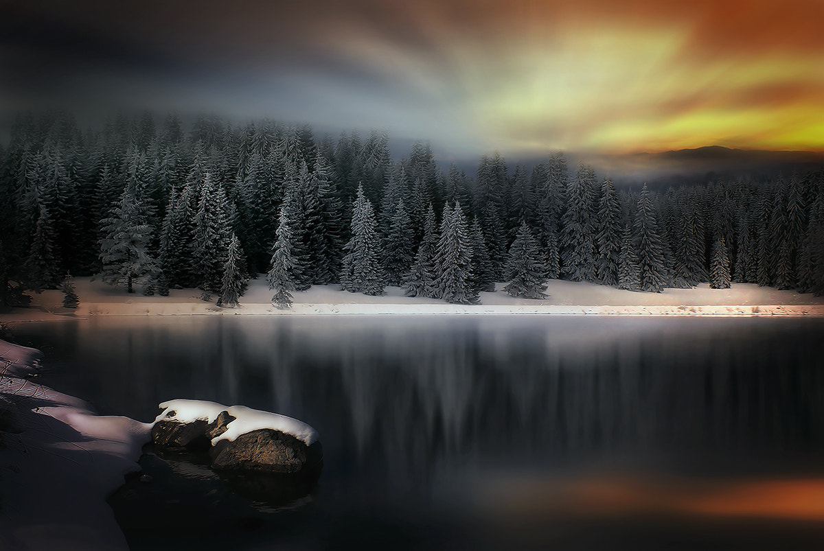 Photograph Winter in the Mountain by Albena Markova on 500px