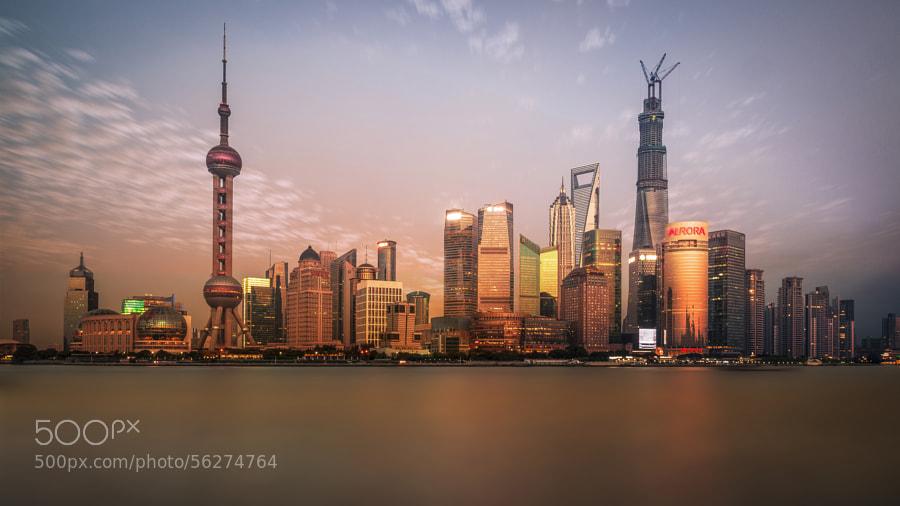 Photograph Shanghai Skyline at Sunset by David D on 500px