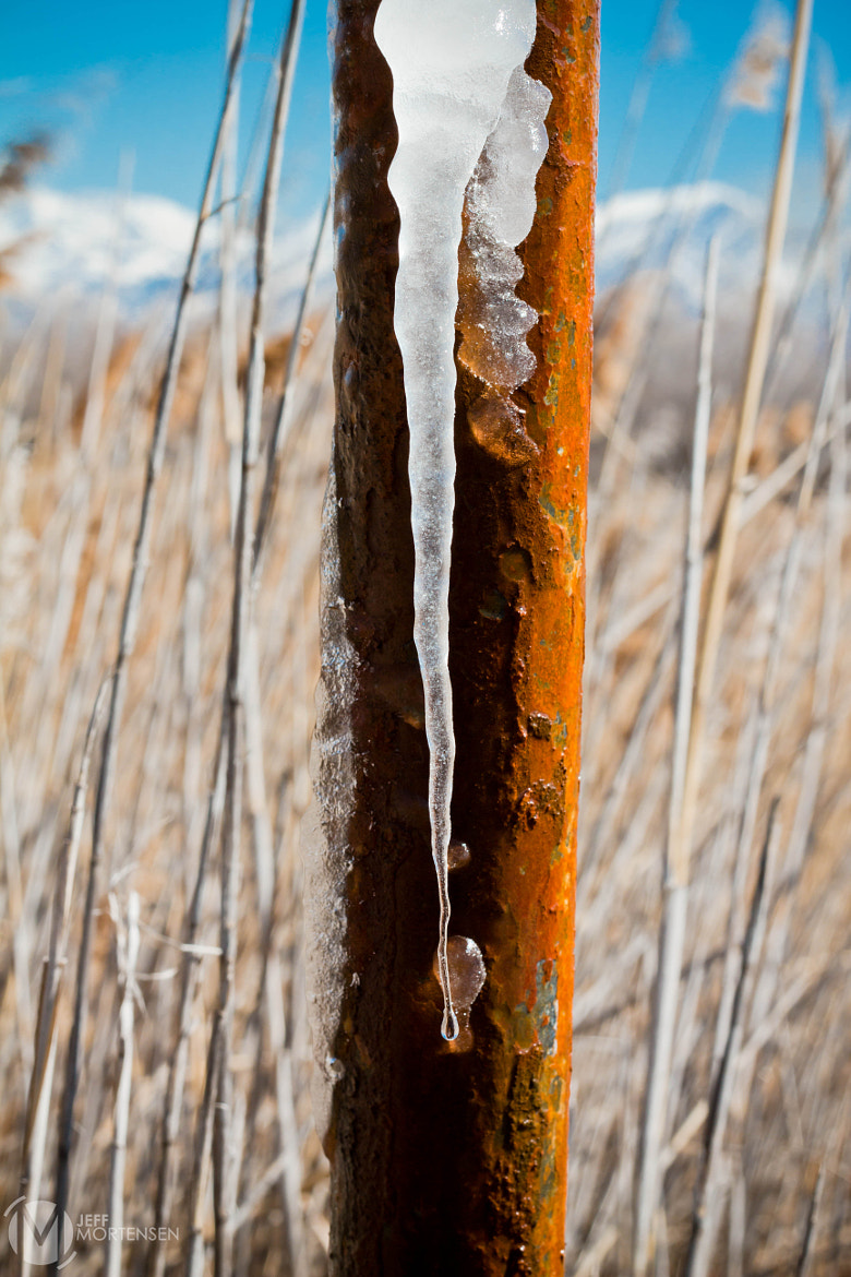Photograph Ice by Jeff Mortensen on 500px
