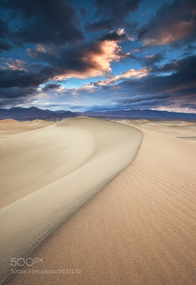 Photograph My Playground - Mesquite Sand Dunes, Death Valley National Park, USA by David Thompson on 500px