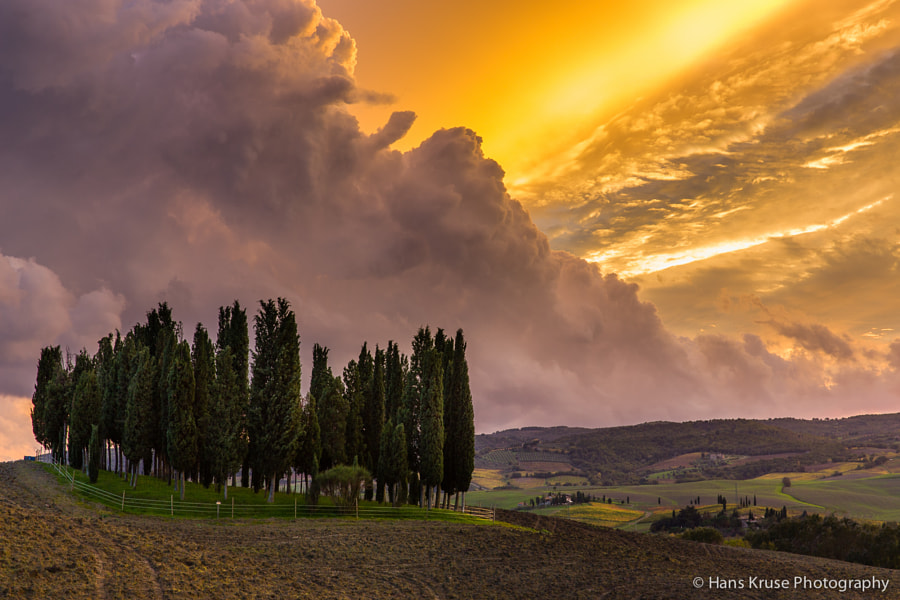 This photo was shot during the Tuscany November 2013 photo workshop. There is a new photo workshop in Tuscany in November 2014.