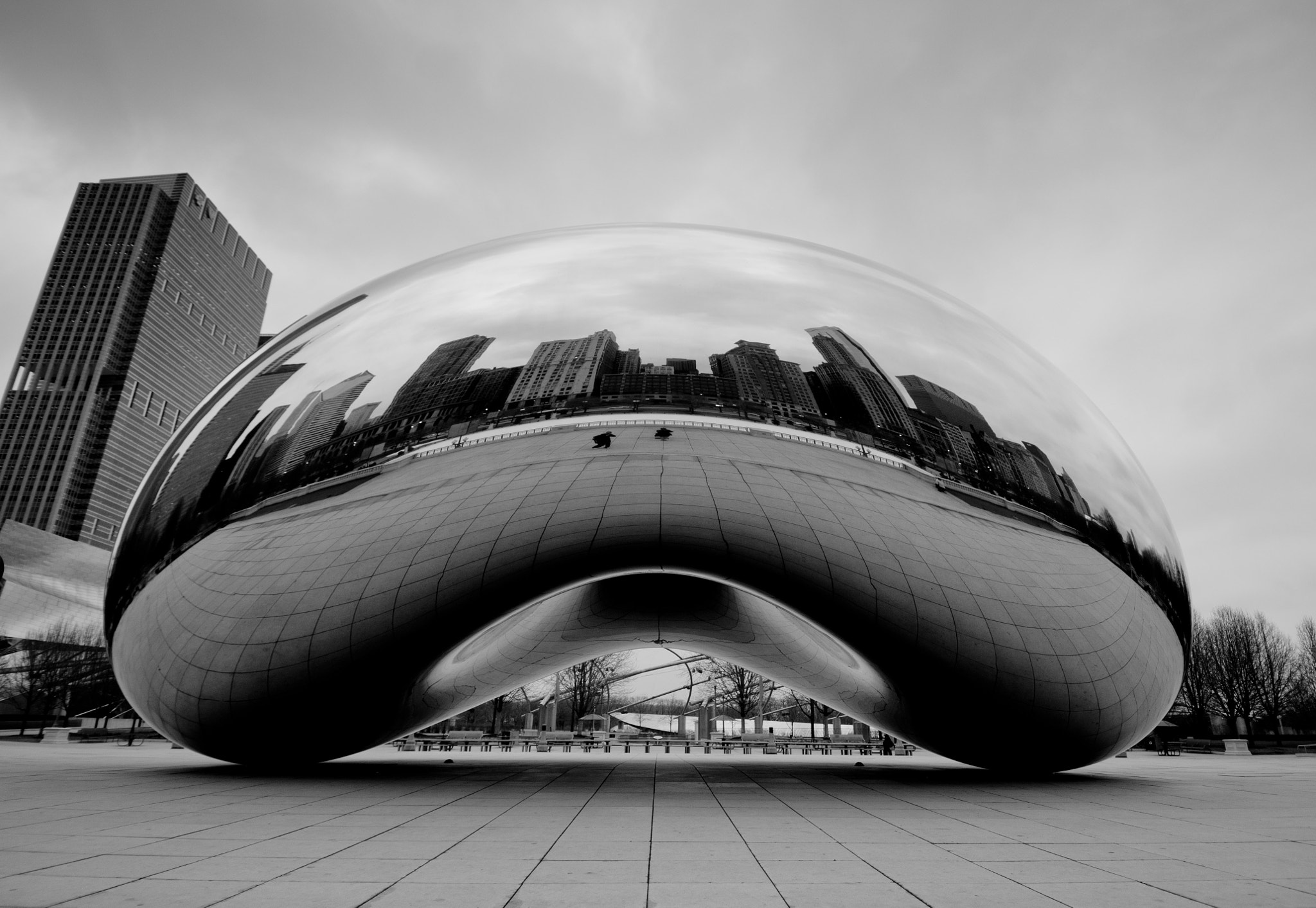 Photograph The Bean by Selena Wang on 500px