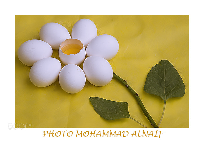 Photograph bbb by mohammed alnaif on 500px