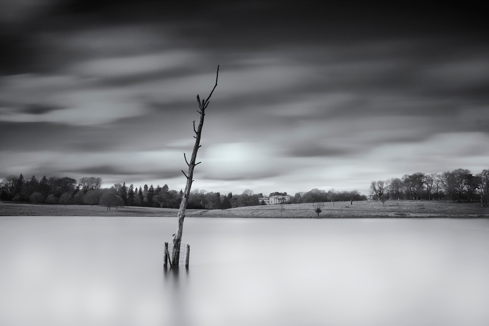 Photograph Tree; Melchette Mere by Duncan Green on 500px