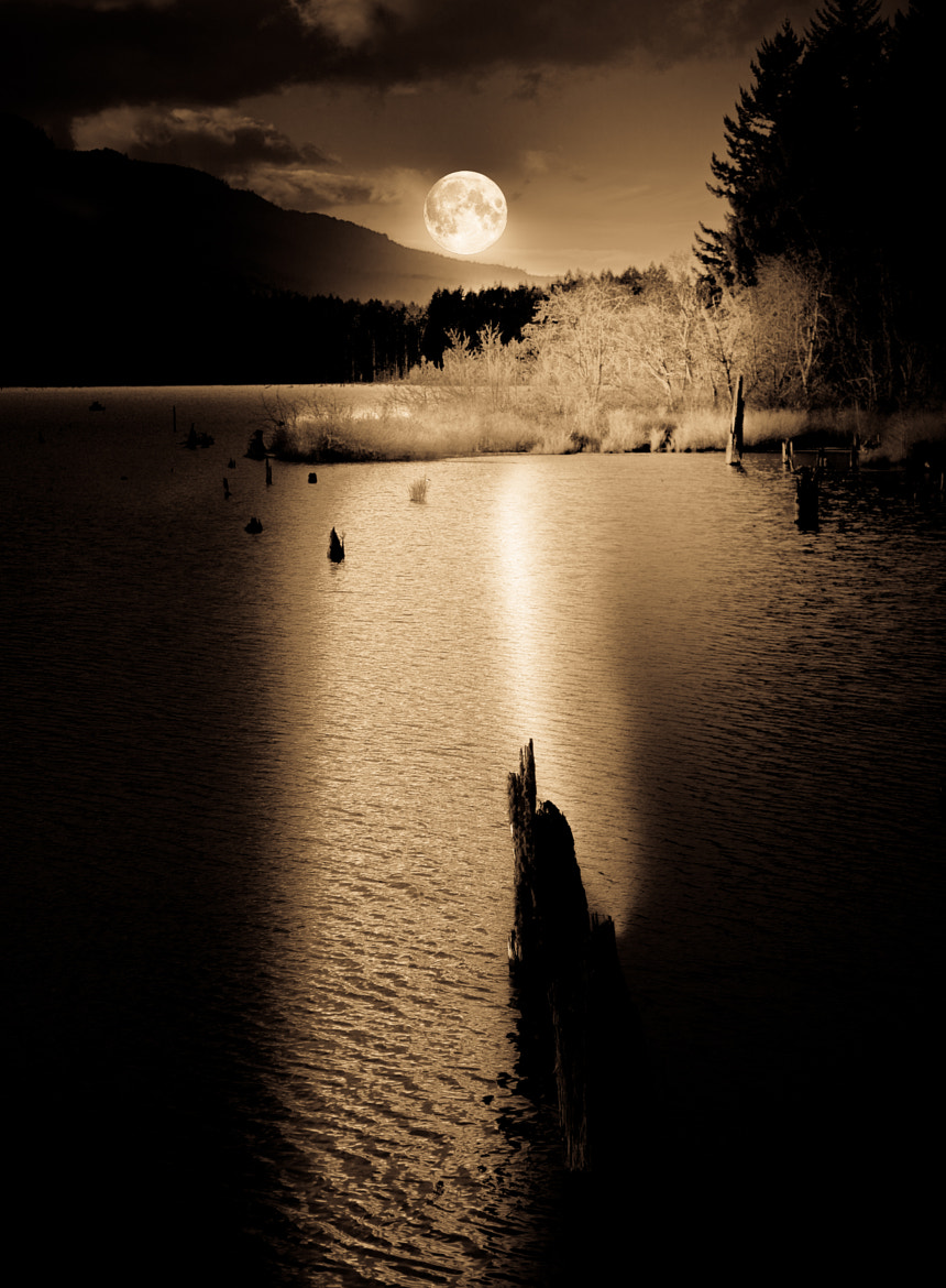 Photograph Ghostly Night by Mike Thompson on 500px