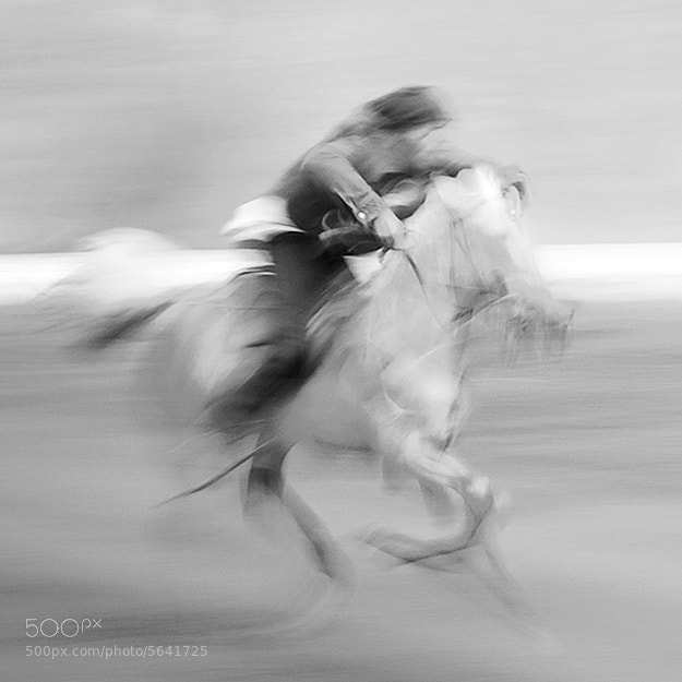 Photograph Tenggerese Horseman  by Hengki Koentjoro on 500px