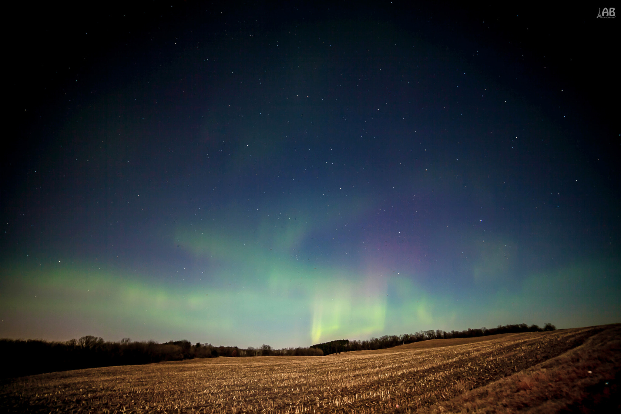 Photograph Northern Lights, Rochester, MN by Alexandra (Petrova) & Bharath Wootla on 500px