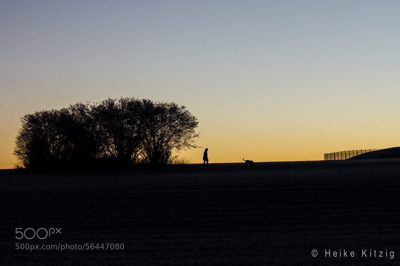 Photograph Walk with dog by Heike Kitzig on 500px