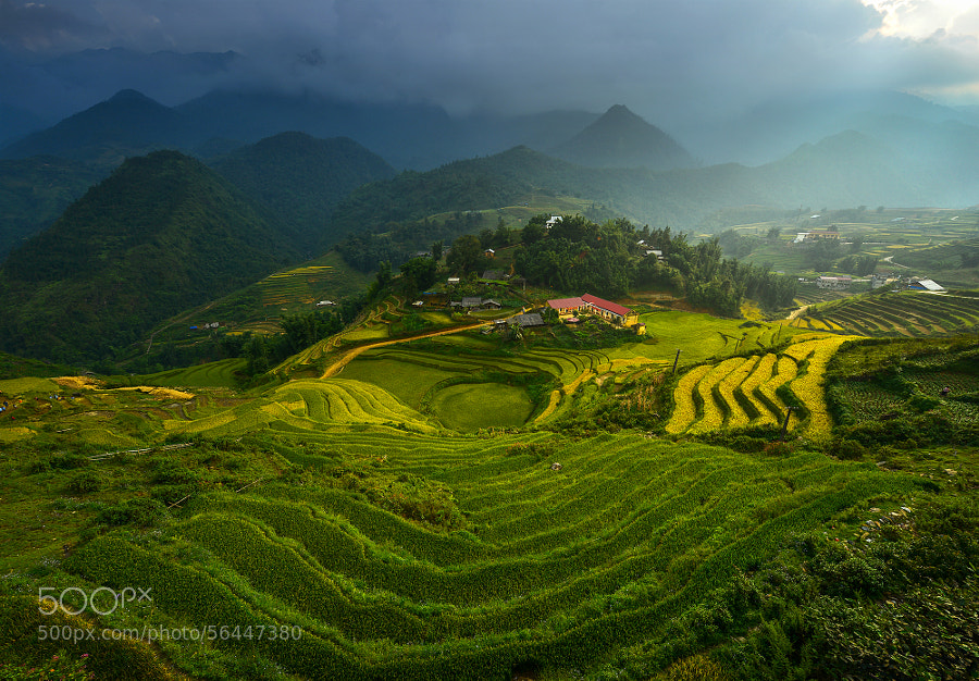 Photograph Small school by sarawut Intarob on 500px