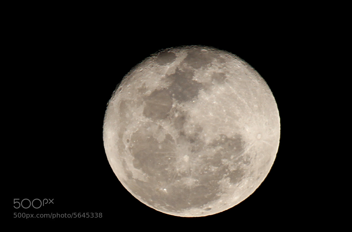 Photograph Moon by Arun Sundar on 500px