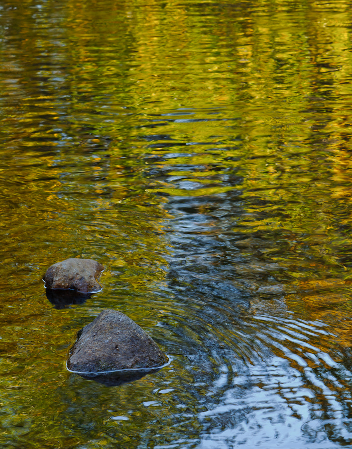 Photograph Ripples of Fall by BK Randklev on 500px