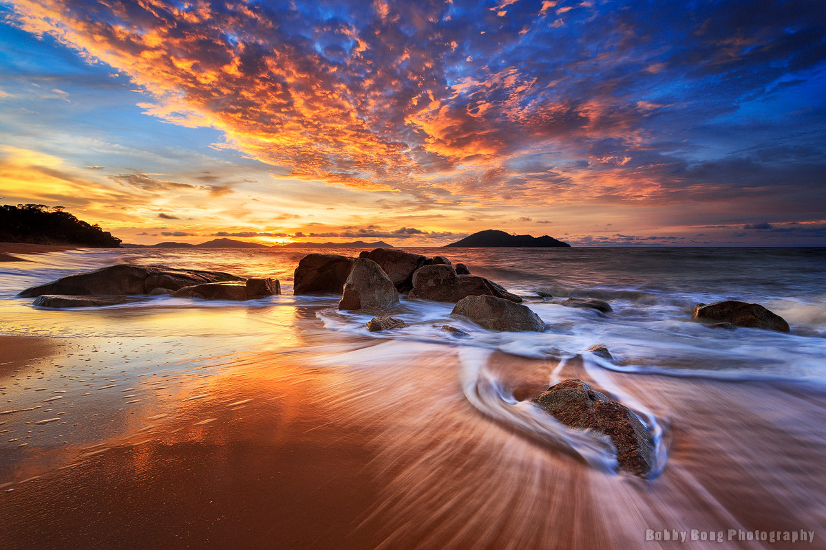 Photograph New Beginning by Bobby Bong on 500px