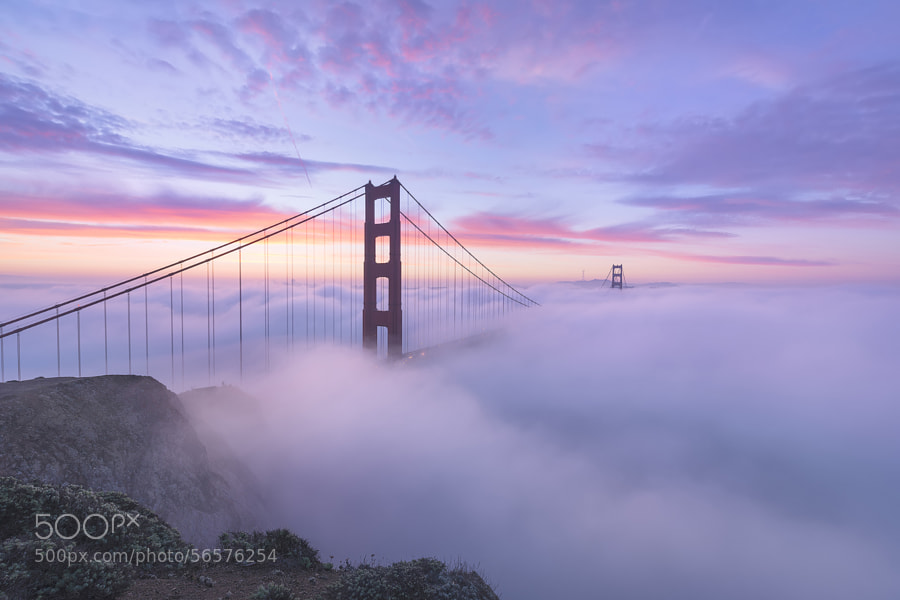 Photograph Synesthesia - San Francisco, California by Dave Morrow on 500px