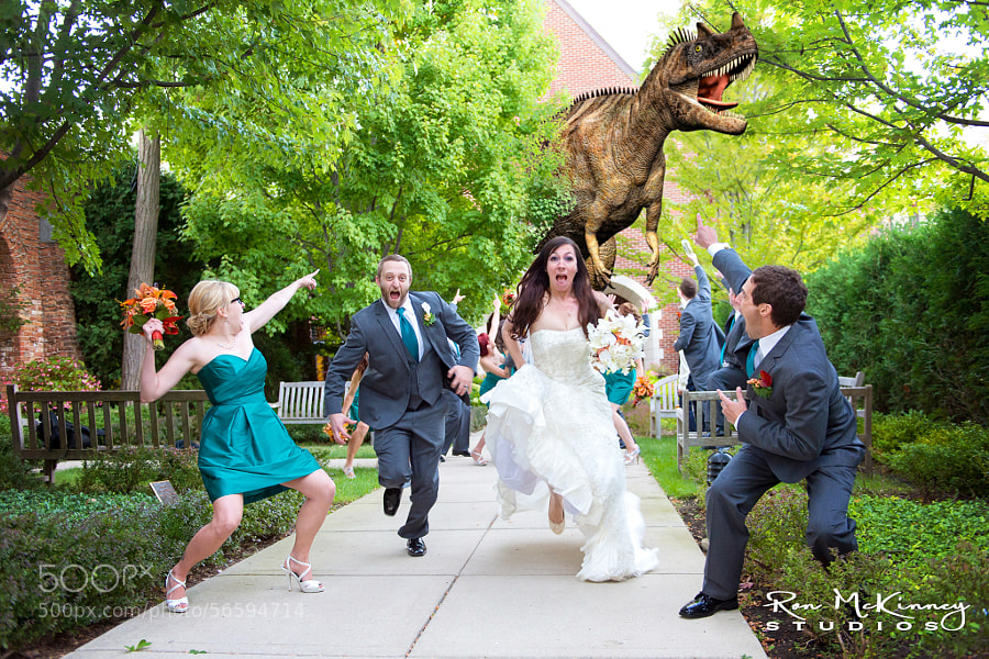 Photograph Uninvited Wedding Guest by Ron McKinney on 500px