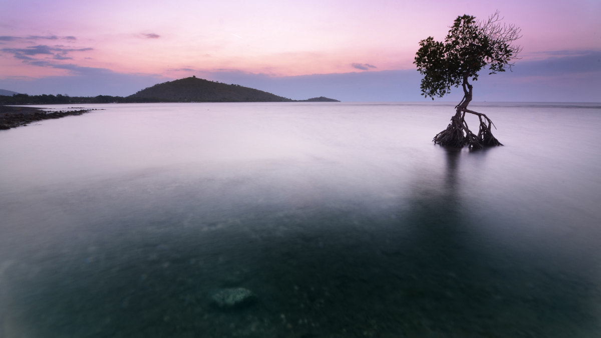 Photograph Bali water scape by Etienne Roudaut on 500px