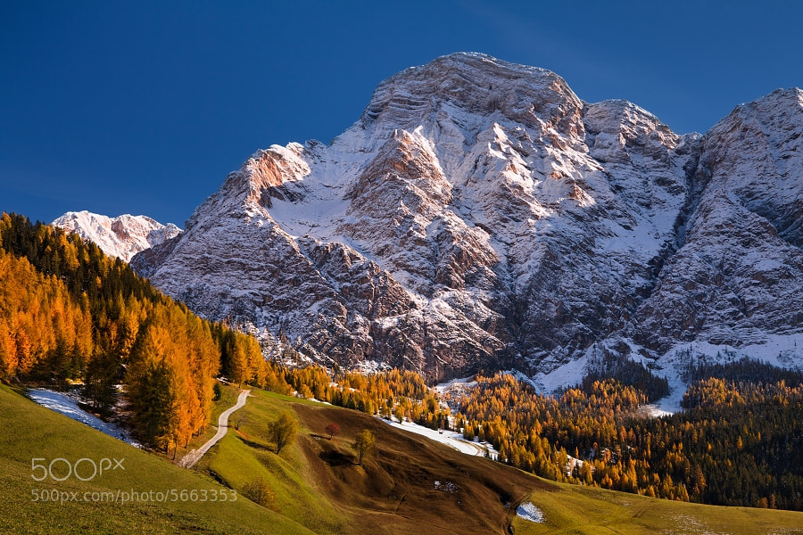 Photograph The first snow by Daniel Řeřicha on 500px