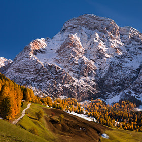 The first snow by Daniel Řeřicha (Rericha)) on 500px.com