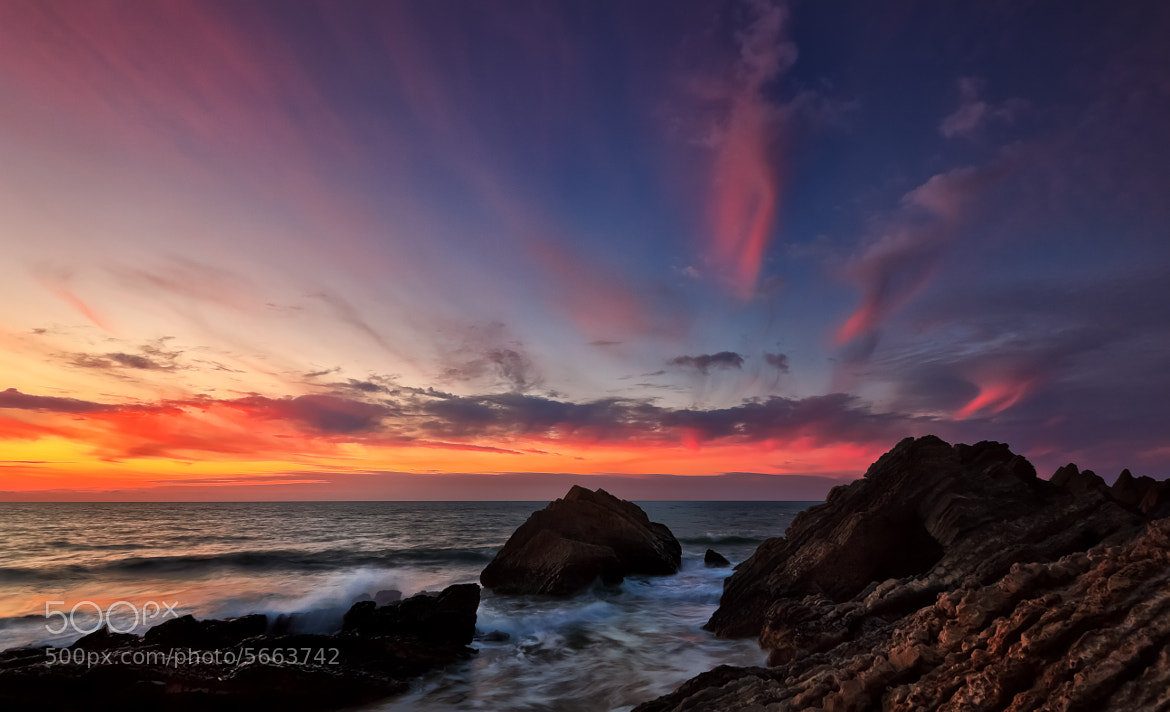 Photograph Last flames by Jose Barbosa on 500px