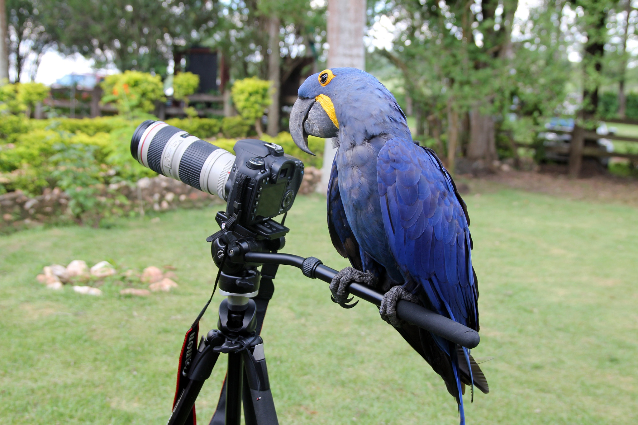 Photograph Smile....now it  is your time by Itamar Campos on 500px