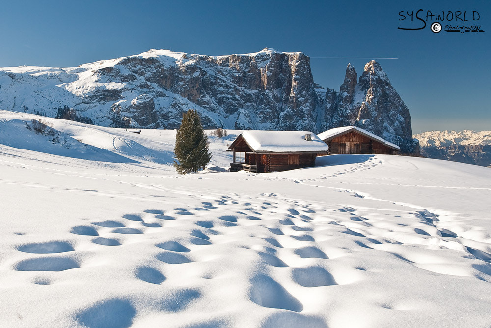 Photograph Sciliar by Roberto Sysa Moiola on 500px