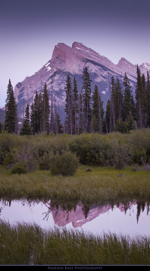 Photograph Mt Rundle in the Night Glow by Marina Bass on 500px