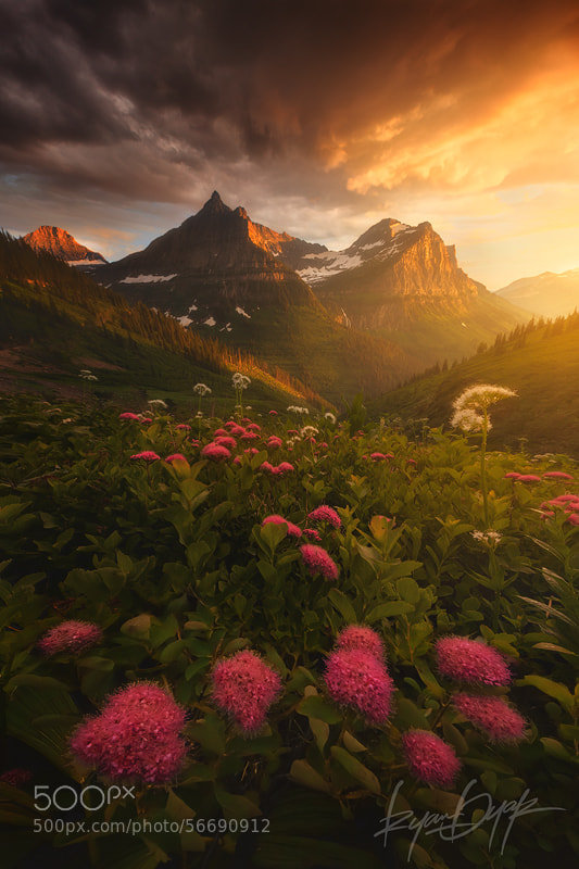 As it Fades by Ryan Dyar on 500px.com
