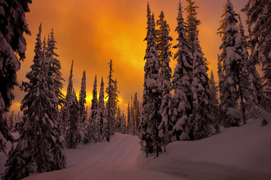 Photograph Silver Star Mountain by Sarah Cederholm on 500px