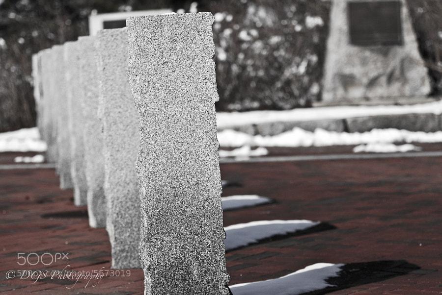 Snow Lanes