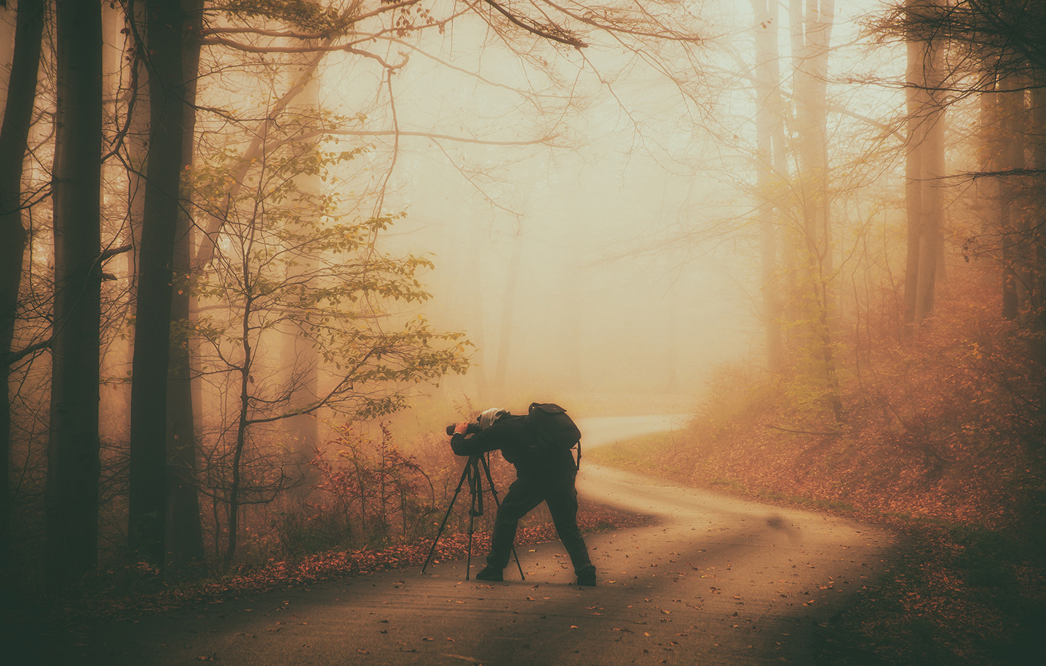 Photograph The photographer by Andy 58 on 500px
