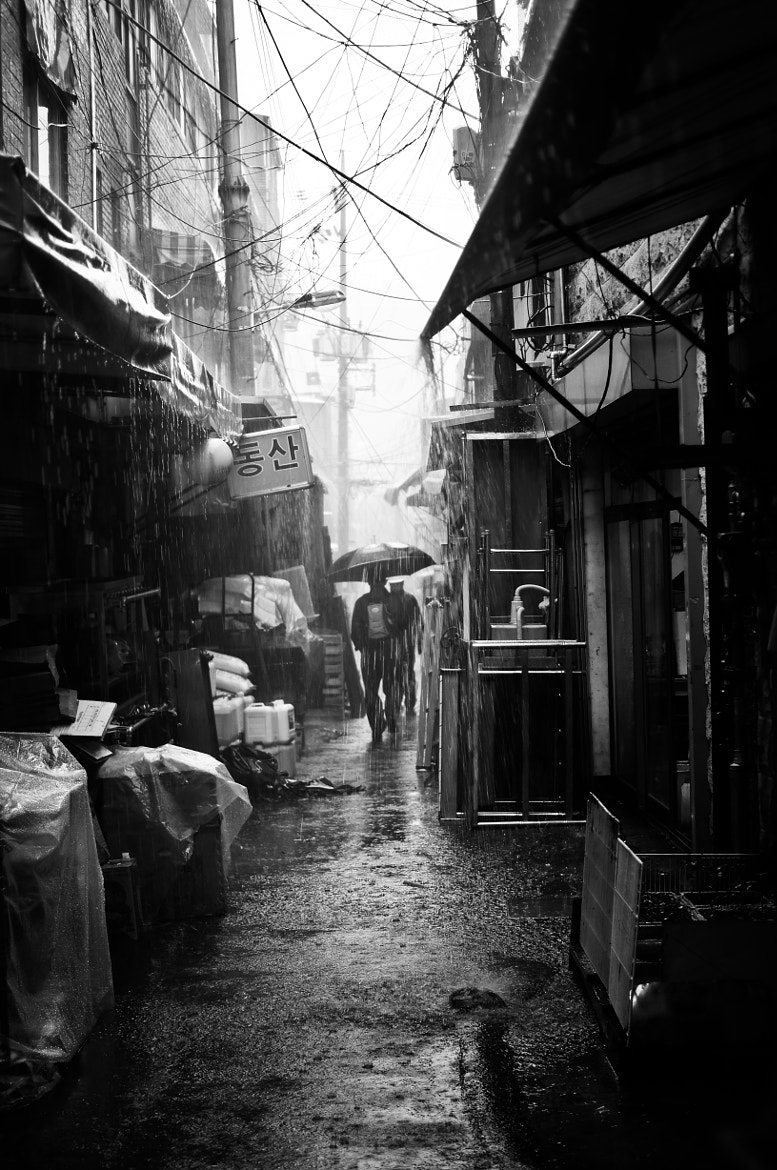 Photograph Rainy Day by Sungjong Kim on 500px