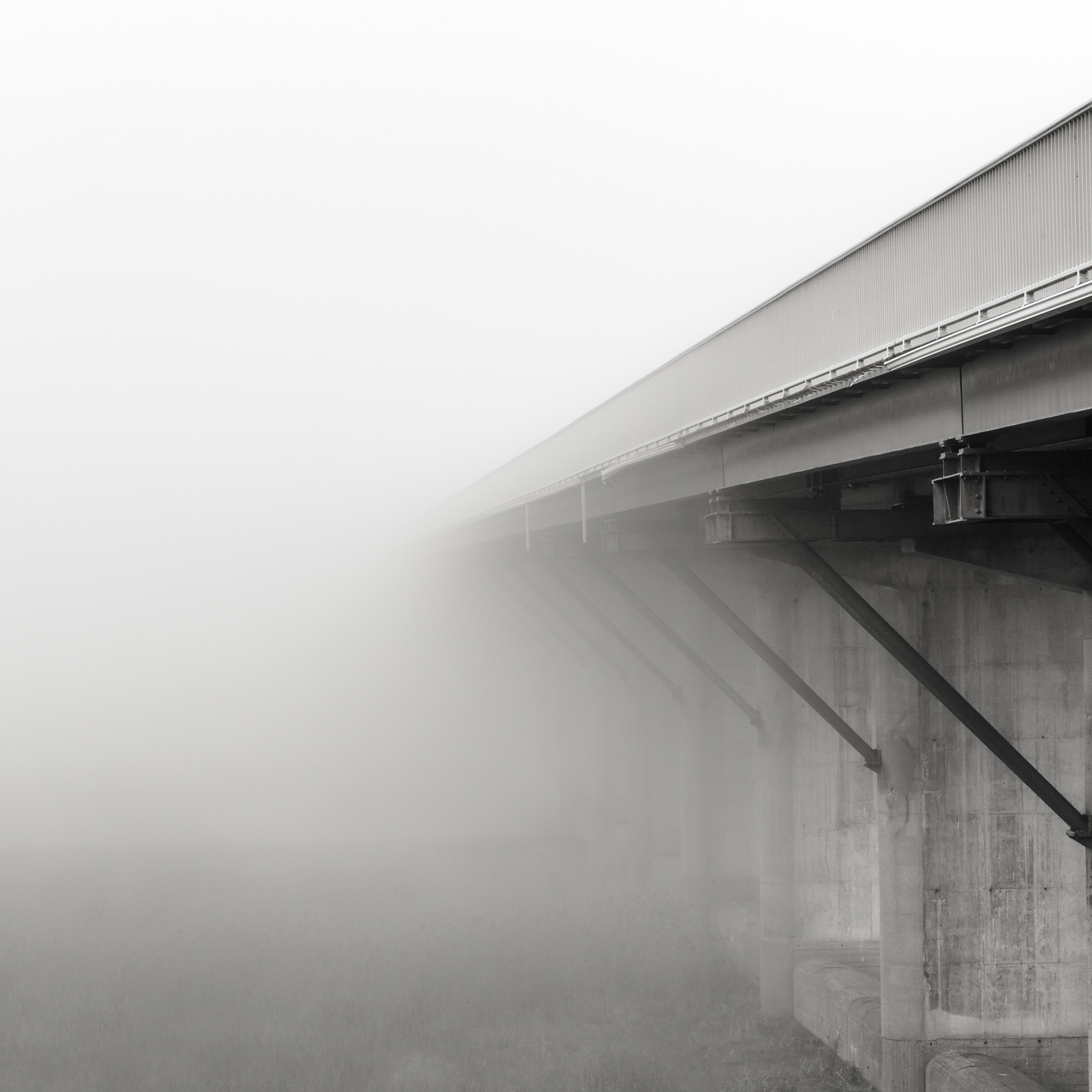 Photograph fog of life by Christian Richter on 500px