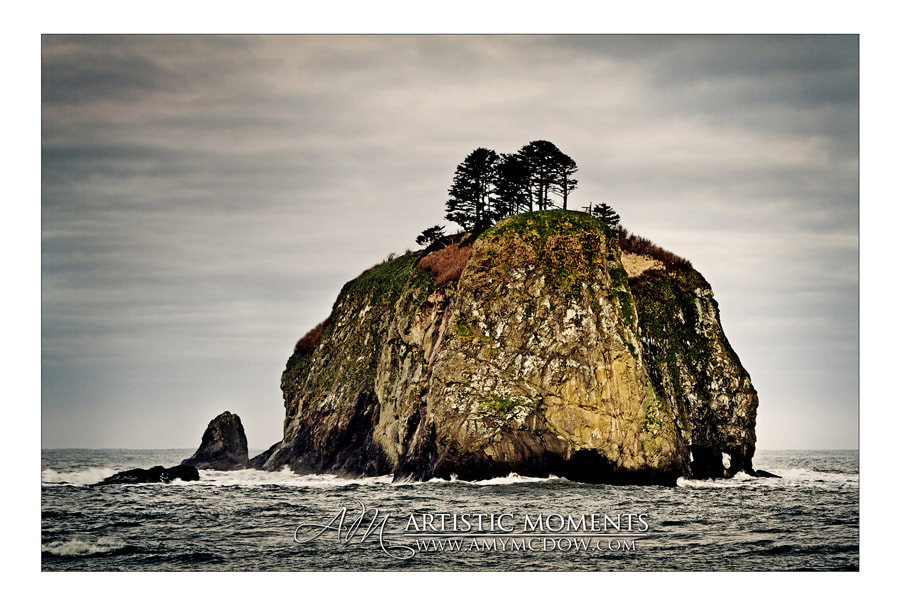 Photograph LaPush by Amy McDow on 500px