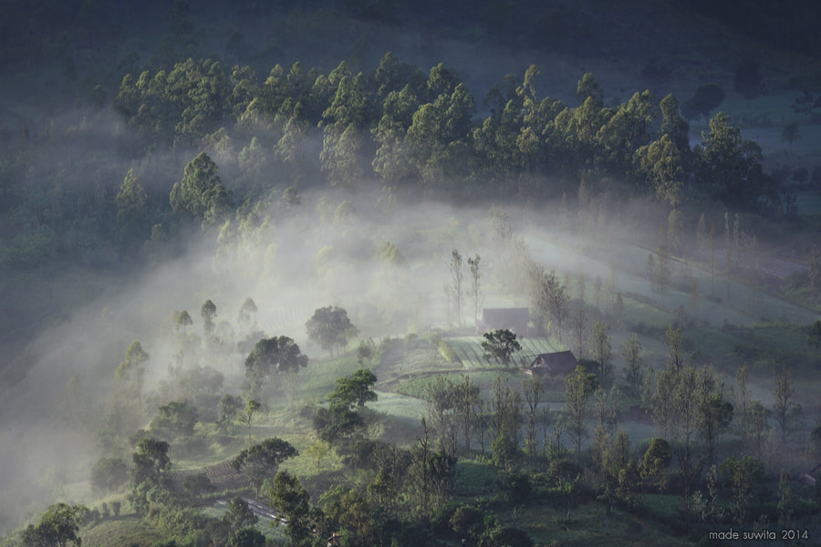 Photograph The Mist by Made Suwita on 500px