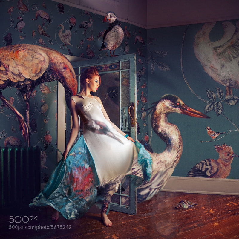 Photograph Migration season by Miss Aniela on 500px