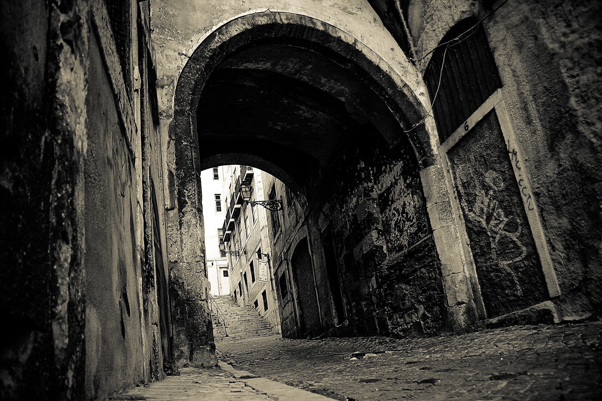 Photograph A dark path is my driveway.... by Rui Boino on 500px